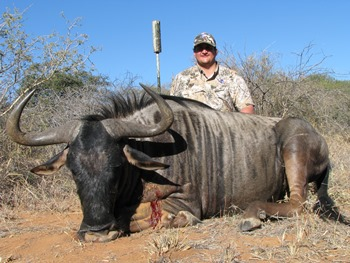 June 2013 Potential World Record Blue Wildebeest Hunt