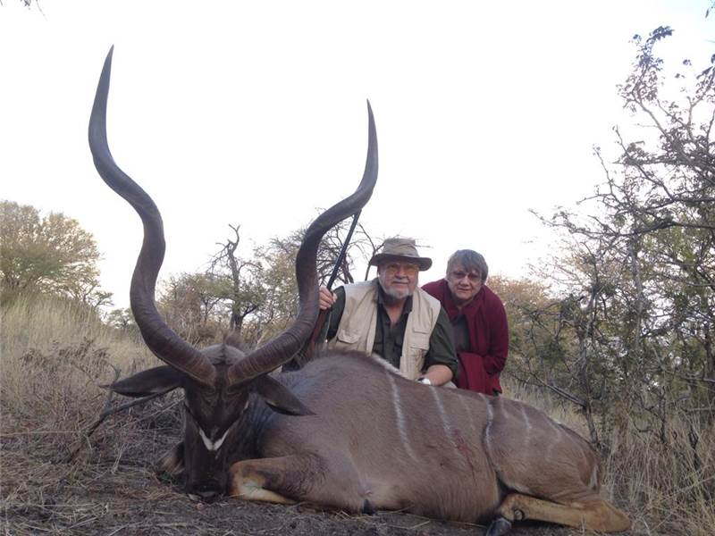 Trophy Kudu Hunt