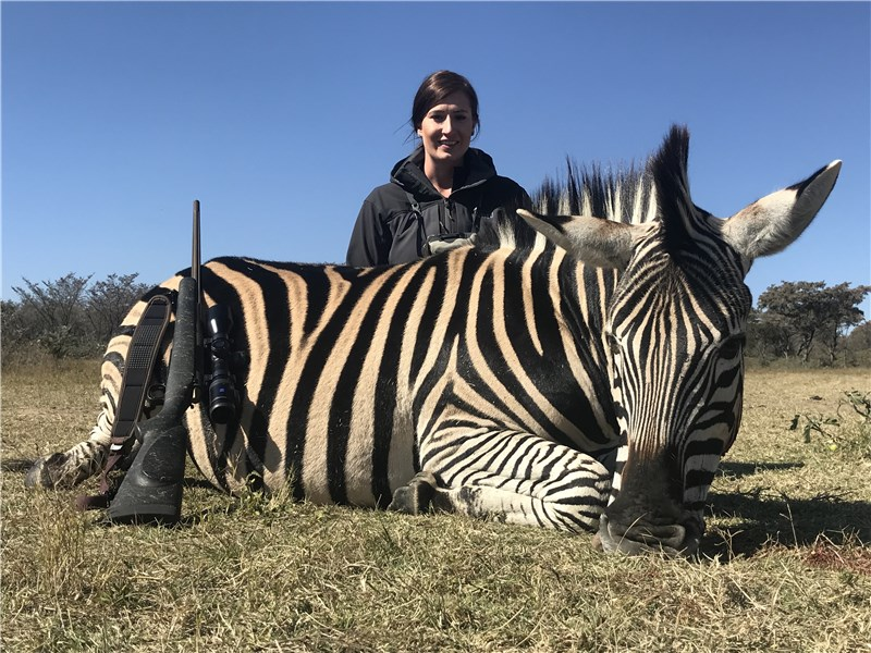 South Africa Zebra Hunt